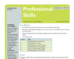 Tru careers professional skills guidance small